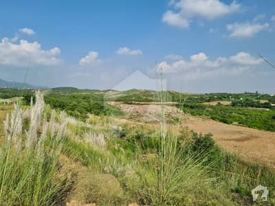 C 16 Cda Sector 50 x 90 Residential Plot Is Available For Sale