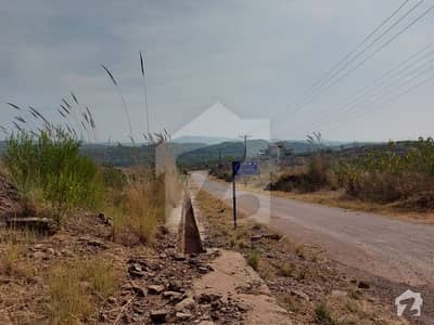 Navel Farm Houses Sector C Top Height Developed 5 Kanal Pair Plots Available For Sale