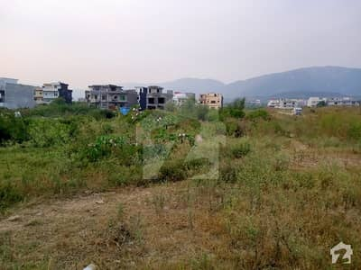 Opposite Margalla Road Plot For Sale