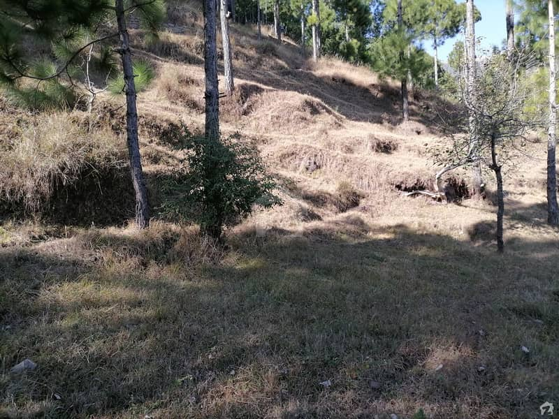 Residential Plot Sized 10 Marla Is Available For Sale In Murree Expressway