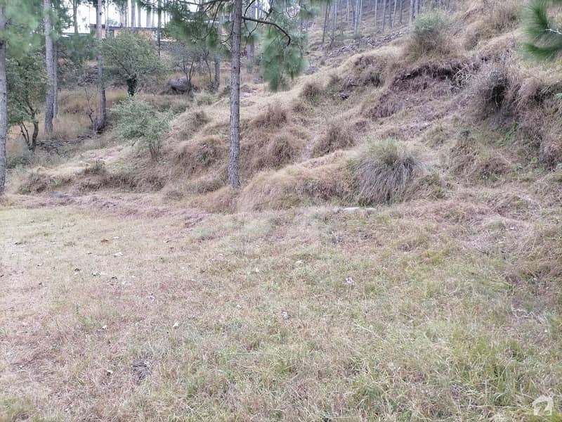 Spacious 10 Marla Residential Plot Available For Sale In Murree Expressway