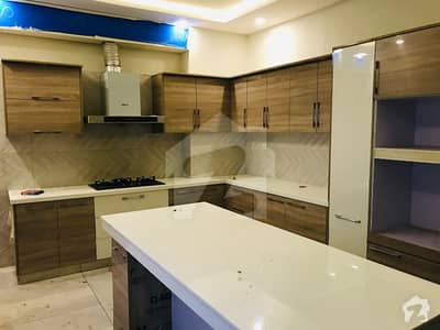Beautiful New Double Unit House Available For Rent