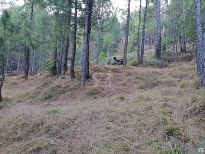 In Murree Expressway Residential Plot For Sale Sized 10 Marla