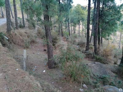 Residential Plot For Sale In Murree Expressway