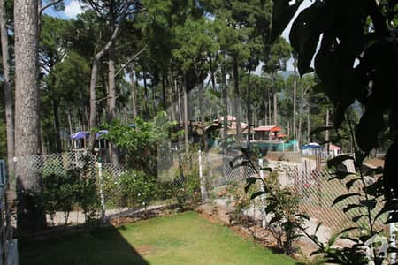 Plot For Sale  Dream Homes In Murree
