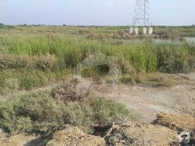 دھابیجی ٹھٹھہ میں 880 کنال زرعی زمین 16.5 کروڑ میں برائے فروخت۔