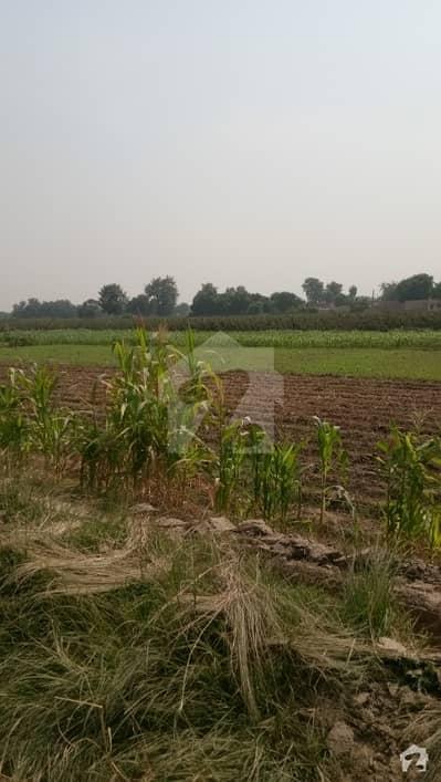 ادرذ احمدپور شرقیہ میں 3200 کنال زرعی زمین 32 کروڑ میں برائے فروخت۔