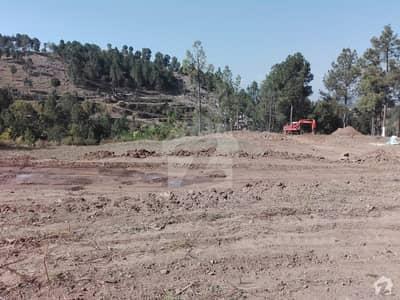 ترہانہ ایبٹ آباد میں 6 مرلہ رہائشی پلاٹ 10.8 لاکھ میں برائے فروخت۔
