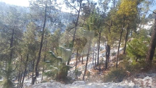پیر سوہاوا اسلام آباد میں 6 کنال رہائشی پلاٹ 30 لاکھ میں برائے فروخت۔