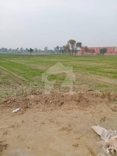 ہارون آباد بہاولنگر روڈ ہارون آباد میں 80 کنال صنعتی زمین 10 کروڑ میں برائے فروخت۔