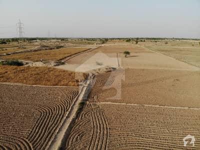 دیگر ٹوبہ ٹیک سنگھ میں 100 کنال زرعی زمین 1.5 کروڑ میں برائے فروخت۔