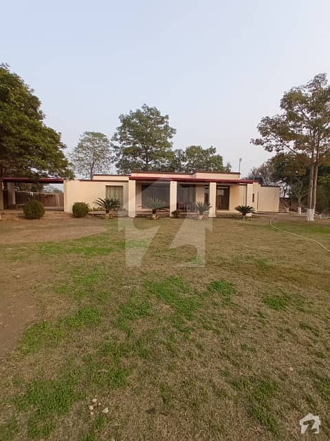8 Kanal Furnish Farmhouse For Rent - Per Day Rental Price Is Rs. 40000