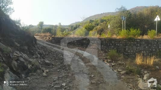 10 Kanal Agricultural Land With All The Basic Facilities Is Available For Sale.