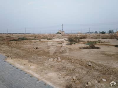 Shop Sized 225  Square Feet Is Available For Sale In New Hala - Mirpurkhas Road Link