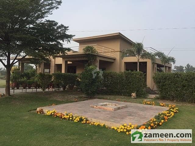 36 Kanal Farm House On Rent In Main Bedina Road Lush Farm House All Boundary Wall