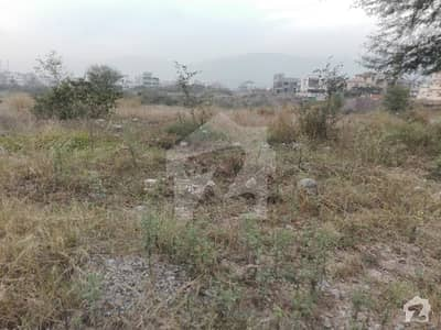 5 Marla Plot 46 Lac Solid Land