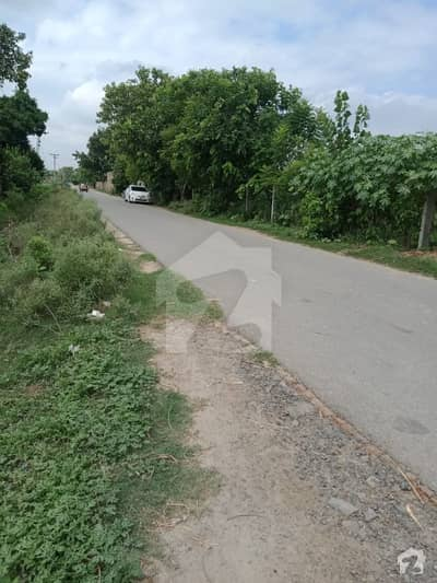 Good Location Plot with NO DP No Pole Road level just Rs 40 million asking