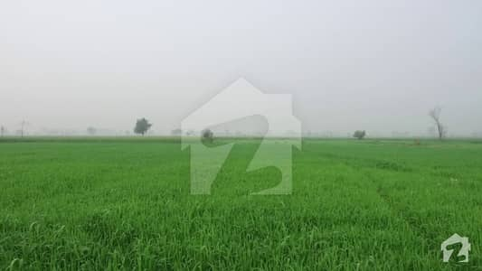 8 Kanal Form House Land For Sale At Main Boulevard Of Lahore Greenz Road