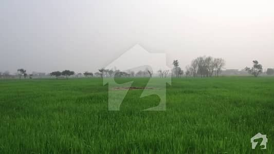 20 Kanal Agricultural Land For Sale Near Dha At Bedian Road Lahore