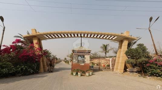 10000 Square Yards Farm House In Bin Qasim Town For Rent