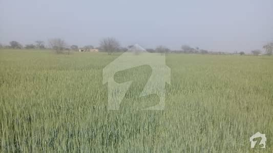 One 4-L Road Agricultural Land For Sale Sized 450000  Square Feet
