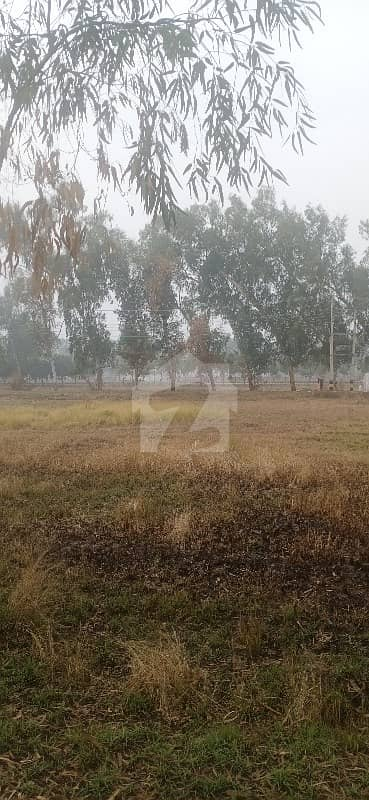 5 Marla Good Location Main The Back 150 Feet Road Confirm Plot For Sale