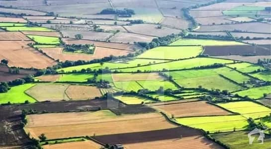 4 Kanal (agro Park Society) Farms Land Available For Sale Chak Beli Khan
