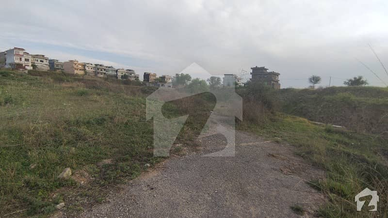 Perfect 1250  Square Feet Residential Plot In I-14 For Sale