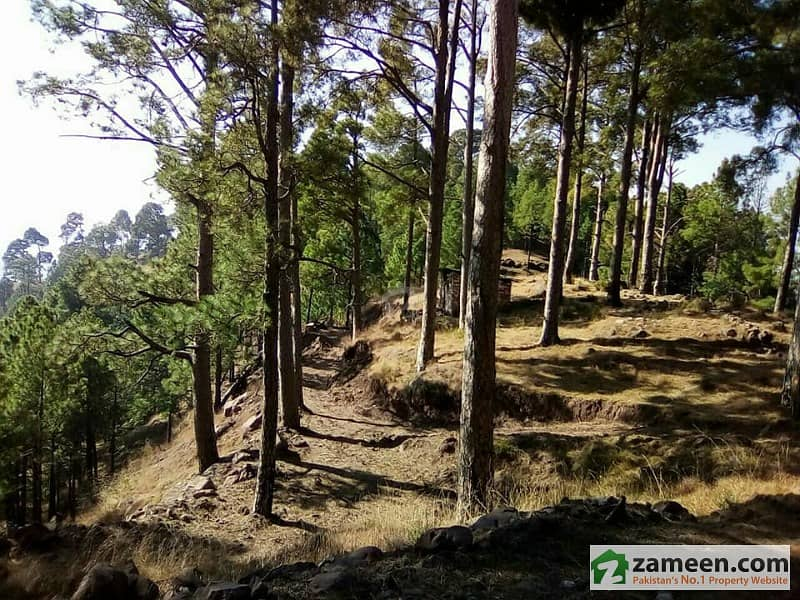 200 Kanal Land For Sale