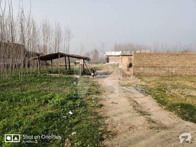وادپگگا پشاور میں 10 مرلہ رہائشی پلاٹ 37 لاکھ میں برائے فروخت۔