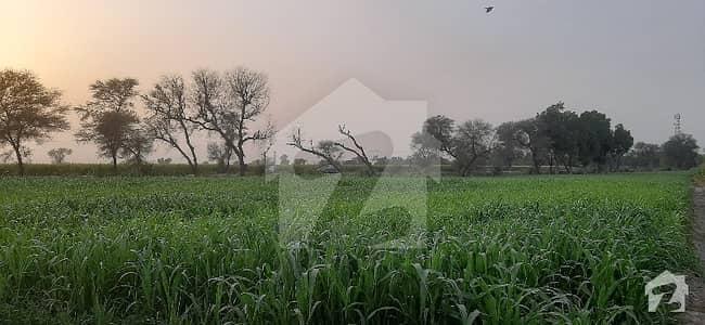 ساہیوال - فیصل آباد روڈ ساہیوال میں 12 کنال دفتر 8.4 کروڑ میں برائے فروخت۔