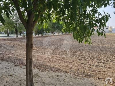 2 Kanal Plot No. 33 For Sale In Gulbahar Block