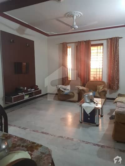 Brand New 7 Marla Single Storey House For Rent In Good Location
