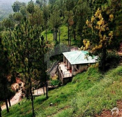 5 Marla Newly Build In Bhurban Murree Hill Views