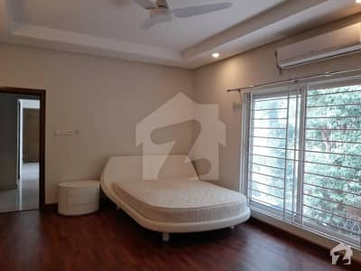 Semi Furnished Newly Renovated House Is For Rent