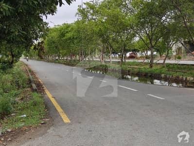 ایل ڈی اے ایوینیو ۔ بلاک ایم ایل ڈی اے ایوینیو لاہور میں 6 کمروں کا 10 مرلہ مکان 64 ہزار میں کرایہ پر دستیاب ہے۔