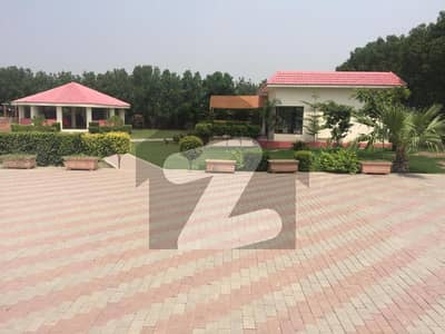 Farmhouse For Sale 45 Lac Per Kanal 1km From Dha Phase 7 Main Barki Road Prime Location