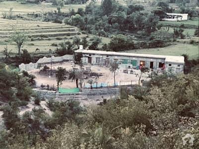 Farm For Sale Main Location Sal Garan Muree
