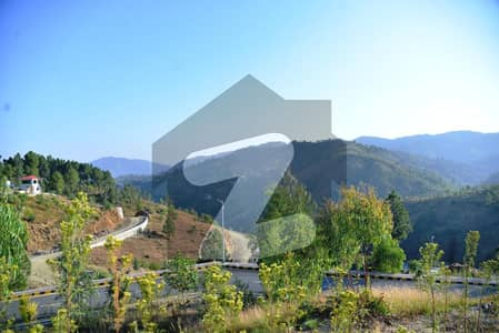 Plot In Silk Valley Housing Scheme Shimal Hill Road Abbottabad