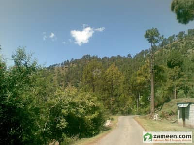 Land For Sale In New Murree