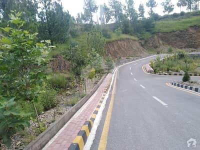 Shimla Hill Road Abbottabad