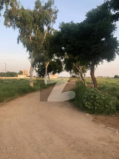 1000 sq yards Residential Plot in Govt Teacher 21A