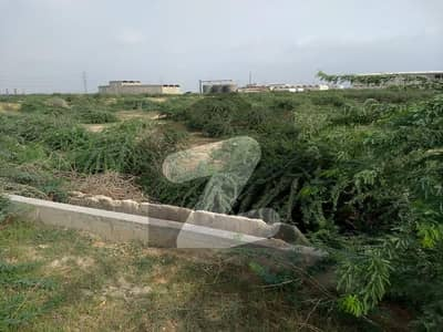 288000 Square Feet Commercial Plot In Stunning Port Qasim Is Available For Sale