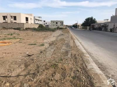 300 Yards Plot Phase 4 Available For Sale