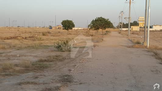 240 sq yds plot for sale in Govt Teacher 16a