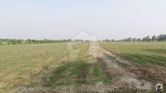 بیدیاں روڈ لاہور میں 2 کنال زرعی زمین 70 لاکھ میں برائے فروخت۔