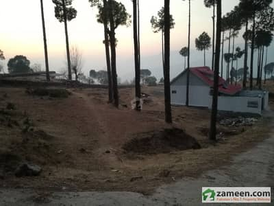Ideal Location Plots Available On Installments And Cash New Murree Hill Top Lodges