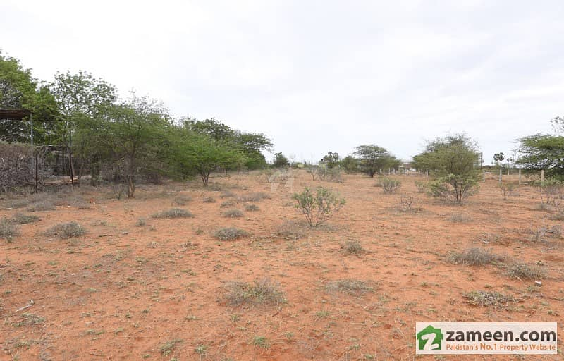 Commercial Plot 2. 5 Acre Prime Location