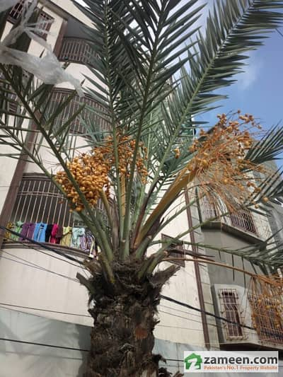 House For Sale In Azam Town