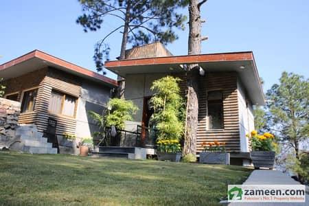 Luxury Farm House On Pirsohawa Road